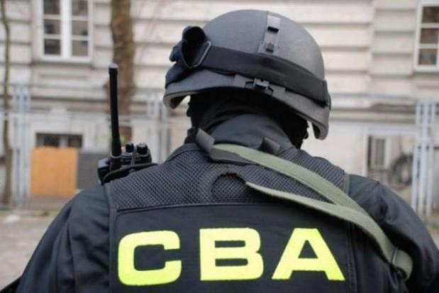 W 2013 r. najwięcej śledztw dotyczyło administracji samorządowej