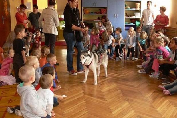Psy w przedszkolu coraz popularniejsze