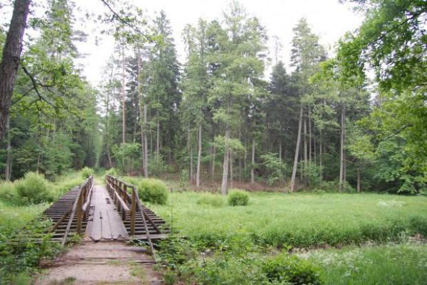 11 środowiskowych projektów z Polski może liczyć na dofinansowanie