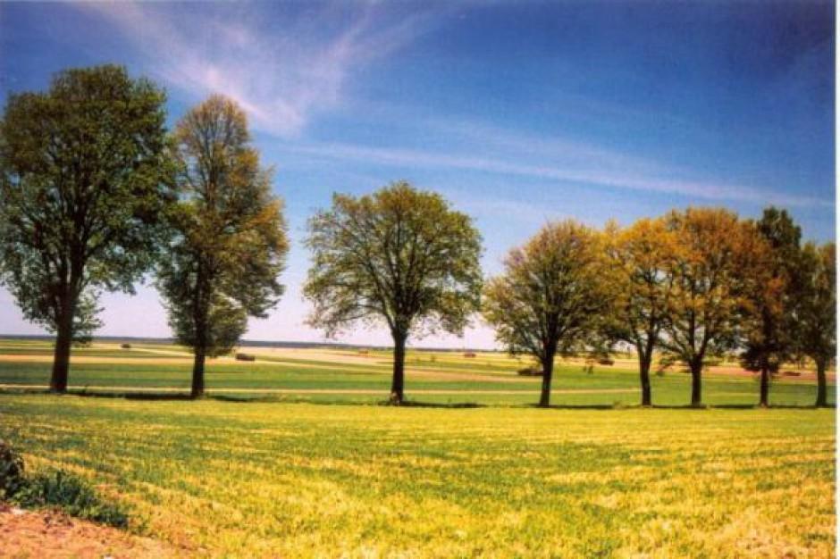 Projekt ustawy krajobrazowej to zagrożenie dla finansów gmin