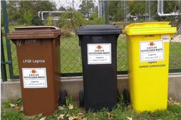 Po obniżce opłat wzrosła liczba śmieciowych deklaracji