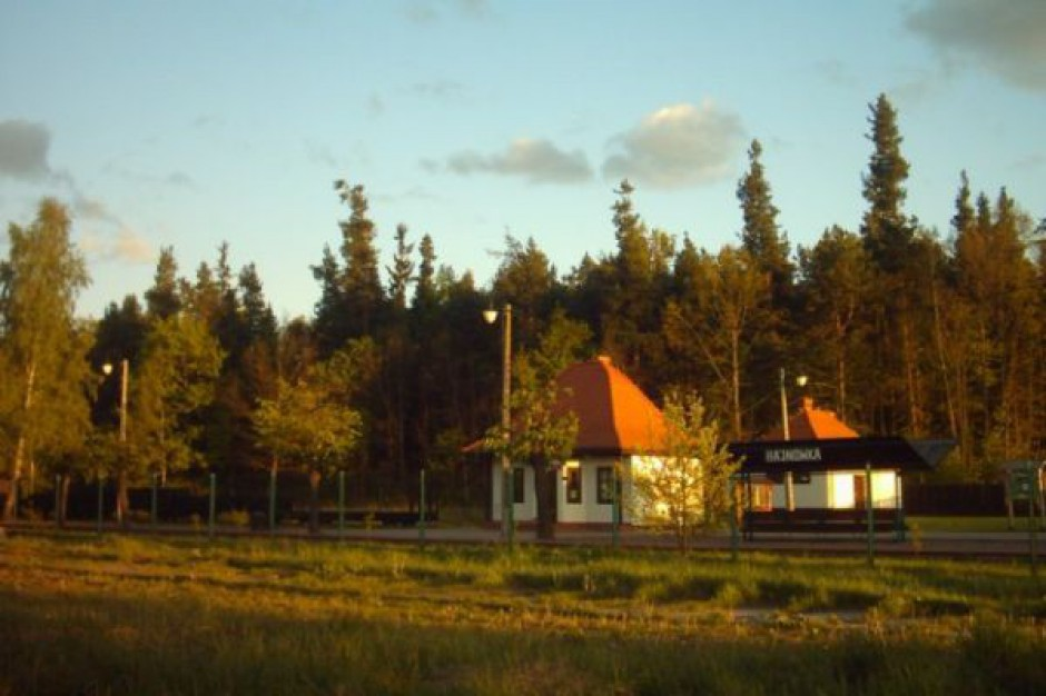Pociągiem ze stolicy do Puszczy Białowieskiej