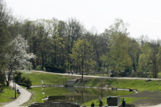 Park Śląski nie zapłaci za wycinkę drzew