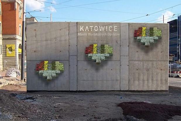 Pionowe ogrody w Katowicach robią furorę