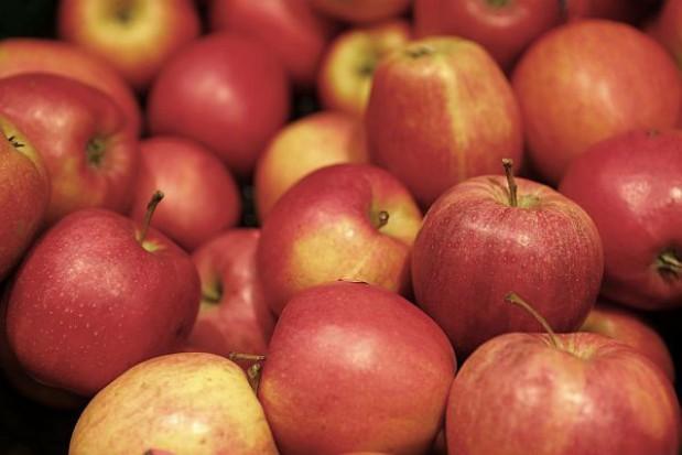 Co z jabłkami dla uczniów i przedszkolaków?