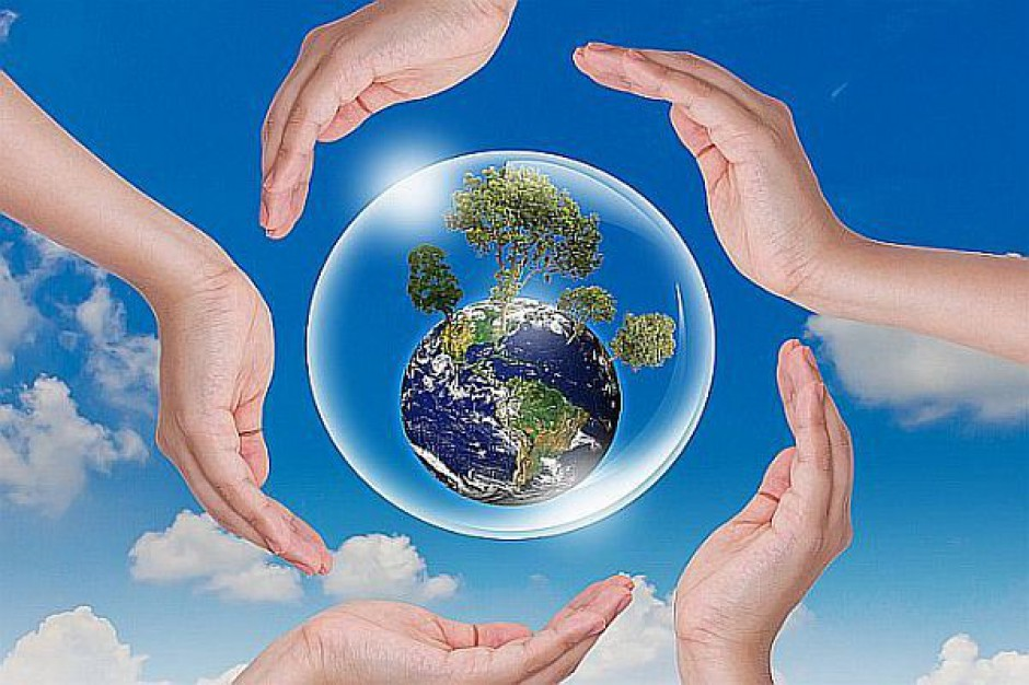 6 mld zł na środowisko w 2015 r. Jak będą rozdzielone?