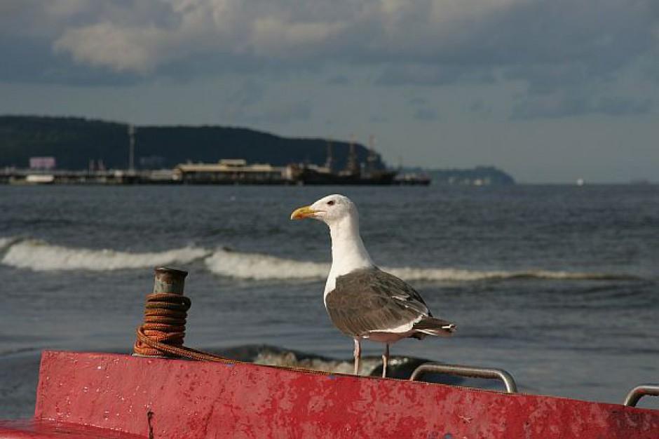 Są pieniądze na ochronę brzegów morskich
