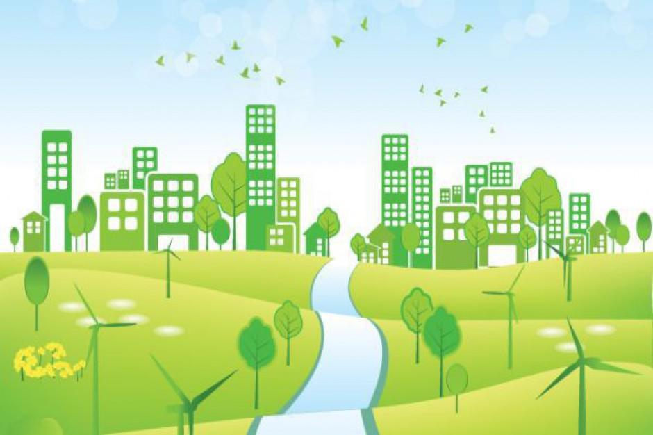 Znamy najbardziej zielone miasta w Polsce
