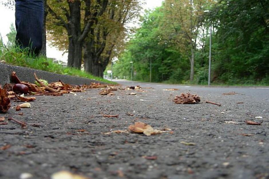 NIK: Urzędnicy błędnie wyceniają nieruchomości pod budowę dróg