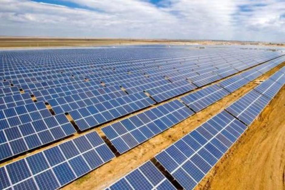 Największa elektrownia słoneczna w Polsce otwarta w Gubine