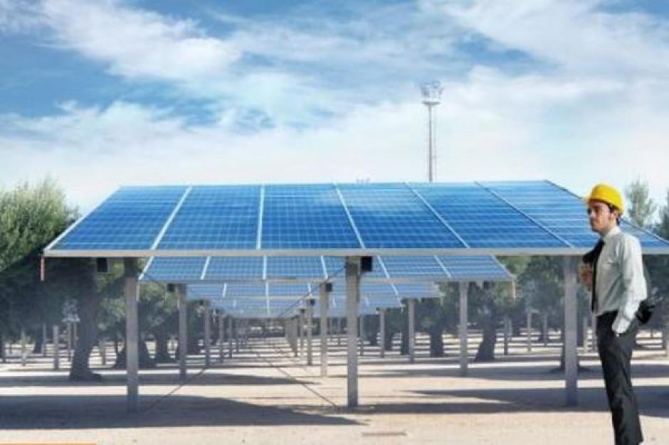 Park zasilany słońcem wkrótce w Kielcach
