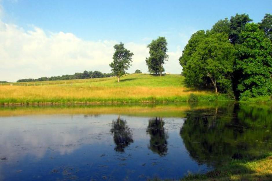 Większość klubów za przyjęciem weta do ustawy o ochronie gruntów