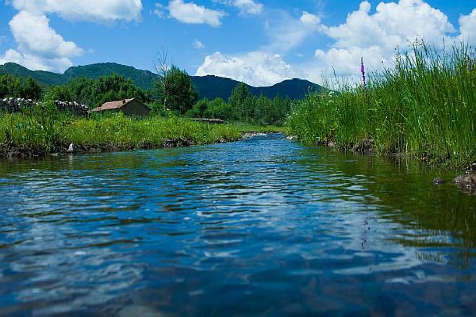 Wsparcie inicjatyw obywatelskich na rzecz ochrony przyrody