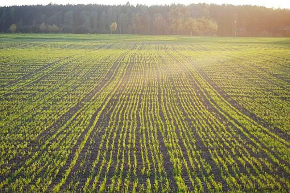 Ustawa o ochronie gruntów trafi do kosza