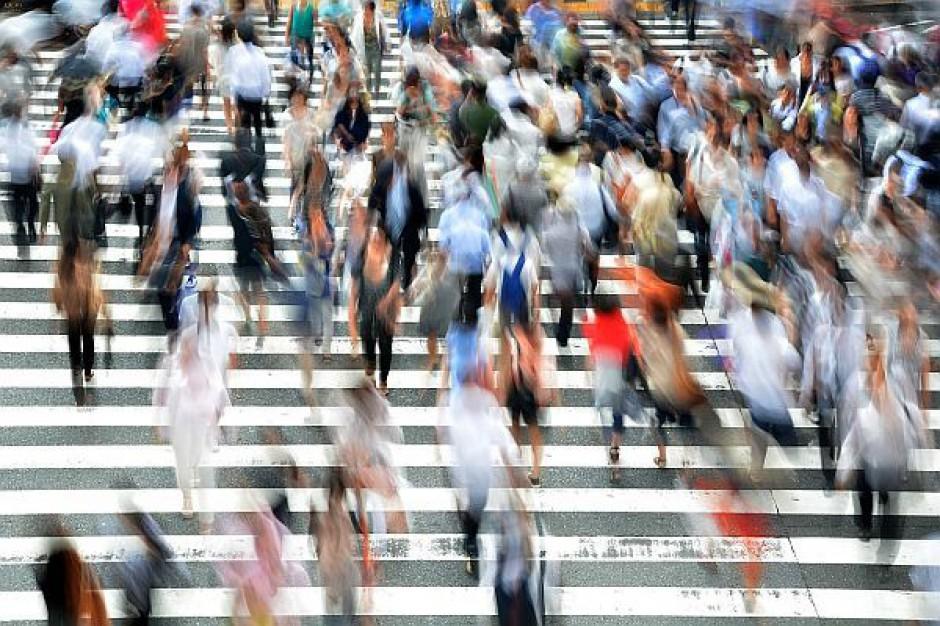 Które miasta są najbardziej popularne wśród obcokrajowców?