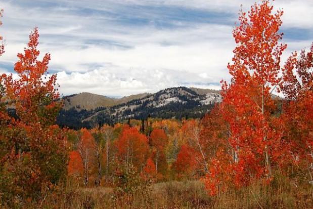 Górskie i nadmorskie miejsowości hitem jesiennych wypadów