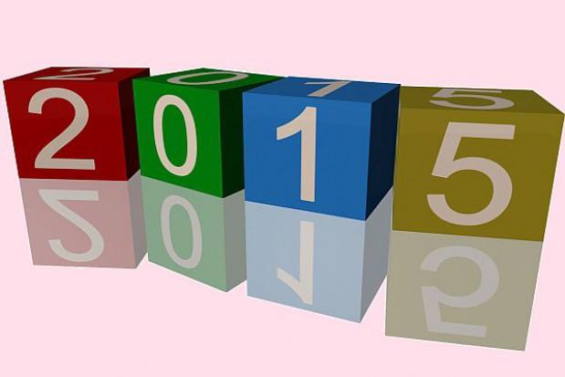 Rok 2015 Rokiem Samorządu Terytorialnego
