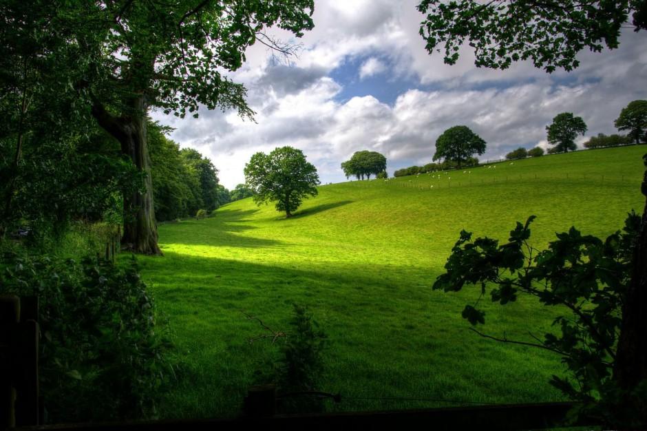 To koniec prac nad ustawą krajobrazową? Będzie plan B
