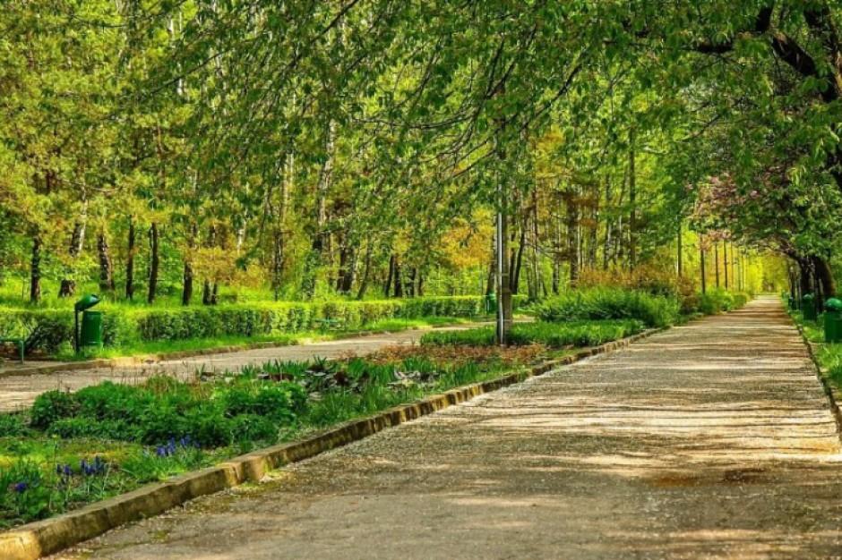 Mieszkańcy Jaworzna sami projektują park