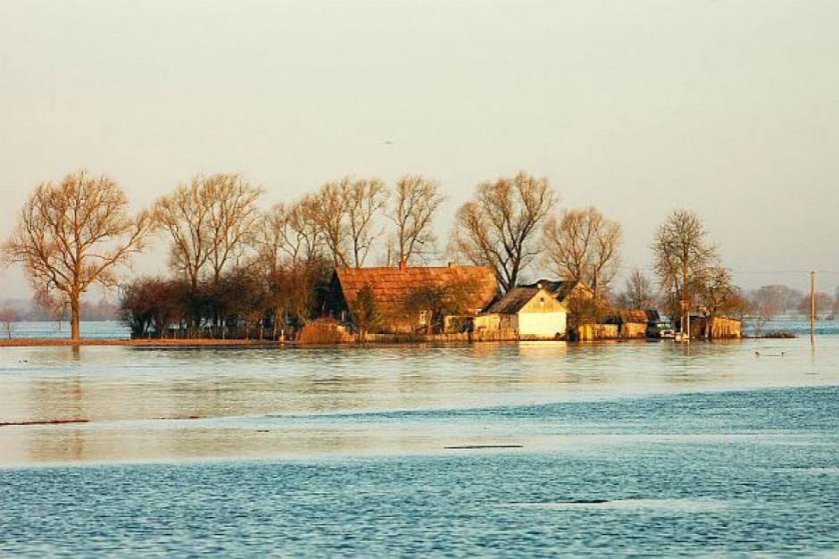 Witold Sumisławski, prezes KZGW: Podczas powodzi nie powinniśmy chronić miejsc, gdzie straty są relatywnie niskie