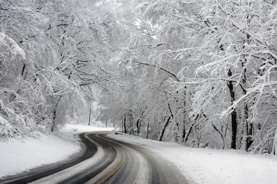 Samorządy i zarządcy dróg dużo zaoszczędzą dzięki łagodnej zimie