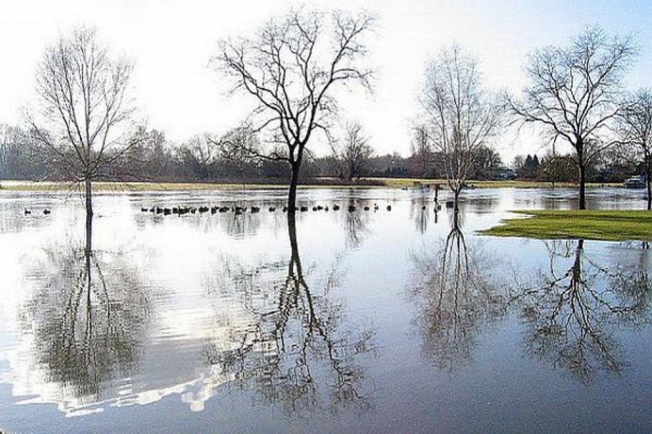 Ponad 3 mln zł na zabezpieczenie potoku Fugas