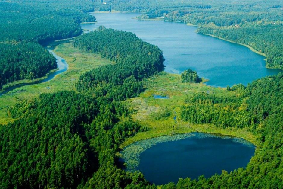 Inteligentne specjalizacje Warmii i Mazur: woda, drewno i żywność