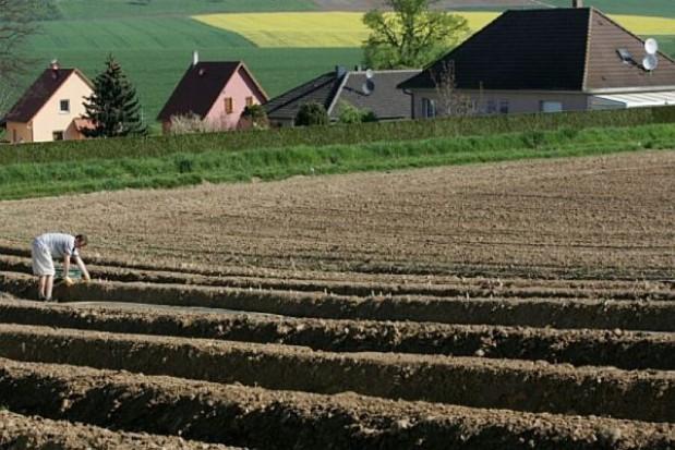 13,5 mld euro na rozwój obszarów wiejskich