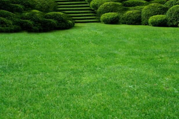 Tereny zielone wokół galerii nową przestrzenią publiczną