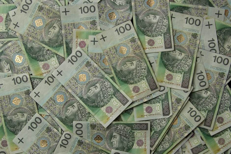 Właściciele zabytków z opolskiego chcą ponad 4 mln zł dotacji. Konserwator ma tylko 470 tys. zł