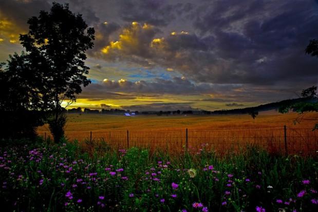 Ustawa krajobrazowa uchwalona