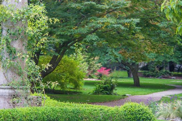 Ogrody zredukują zanieczyszczenia miast i poprawią jakość powietrza