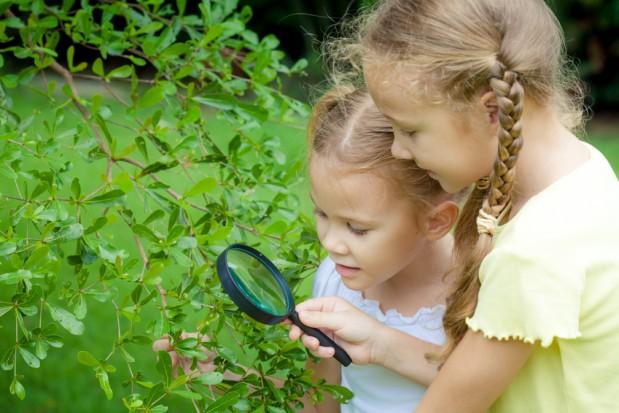Katowicki WFOŚiGW dofinansował zielone szkoły dla 2,5 tys. uczniów