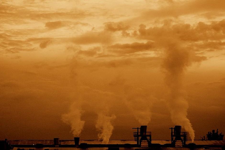 Ministerstwa ignorują problem jakości powietrza