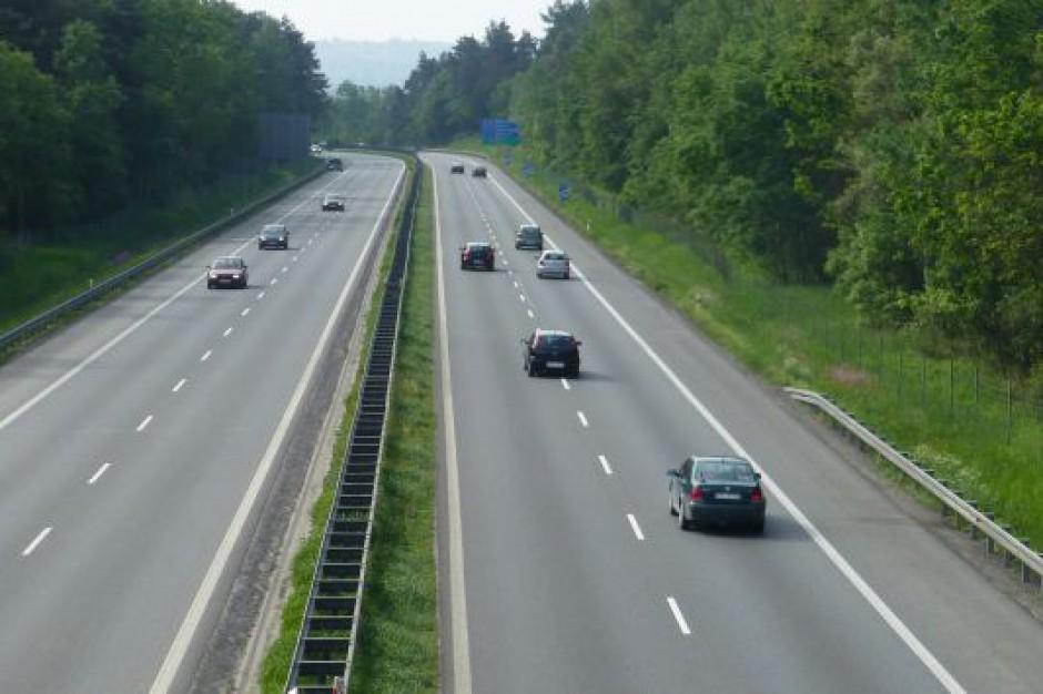 Bufostrada sposobem na poprawę bezpieczeństwa na drogach