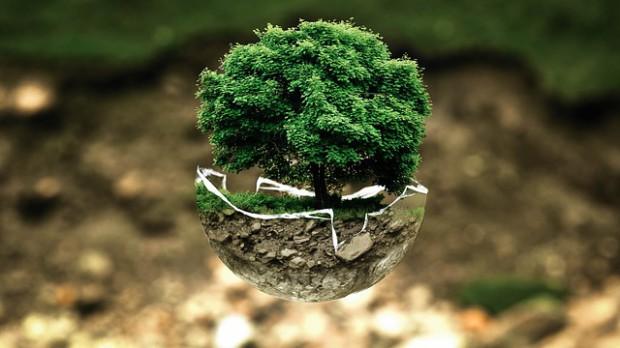 Warszawa świętuje Światowy Dzień Ziemi