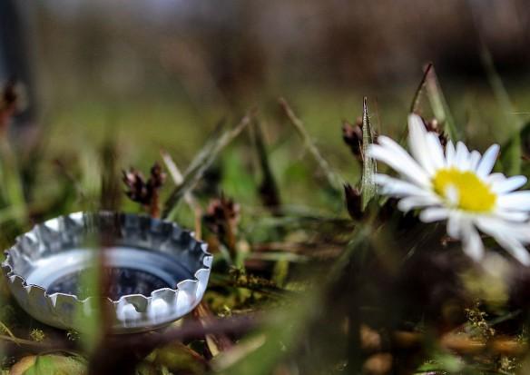 Na wysypiskach śmieci powstają miejsca piknikowe, ogrody czy nartostrada