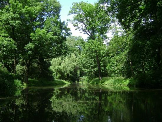 Kraków: Nowa jednostka gminna zadba o zieleń miejską