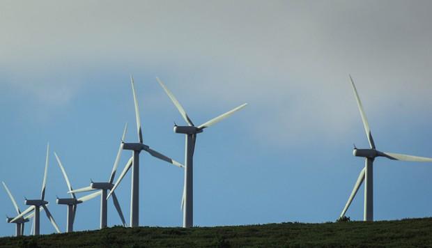 Rząd zdecydował ws. farm wiatrowych