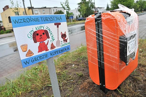 Jak Toruń próbuje rozwiązać problem psich kup