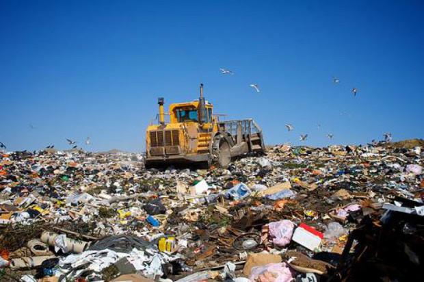 Produkujemy rocznie 11 mln ton. Najwięcej w mazowieckim i śląskim