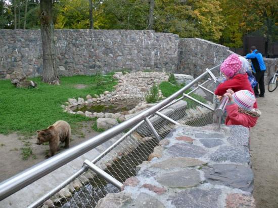 Białystok ogłasza przetarg na modernizację ogrodu zoologicznego