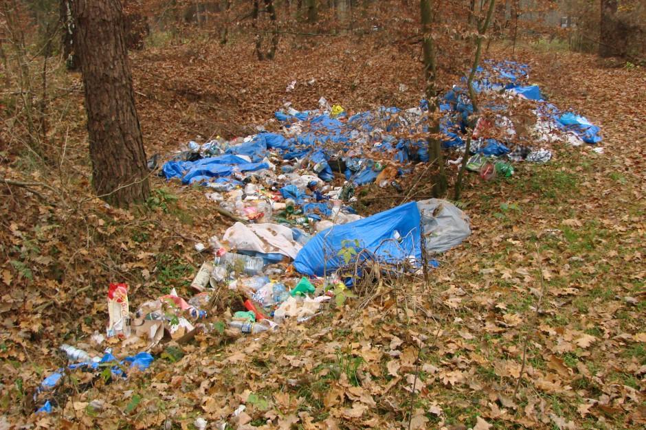 Kontrola NIK, reforma śmieciowa: problemów nie ubyło