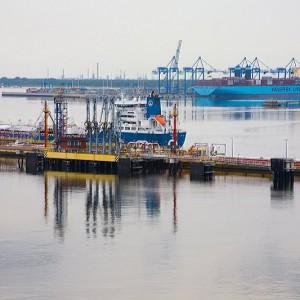 Spodziewać się można dodatkowych zawinięć statków do Portu Gdańsk (fot.portgdansk.pl)