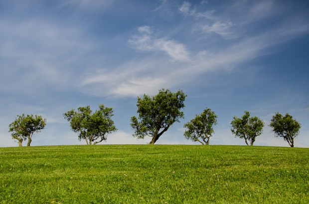 Rząd za zmianą przepisów środowiskowych