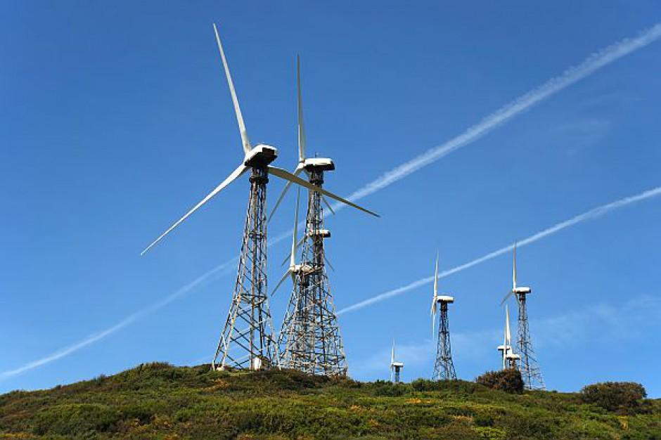 Na Żuławach ruszyła farma wiatrowa finansowana przez BOŚ