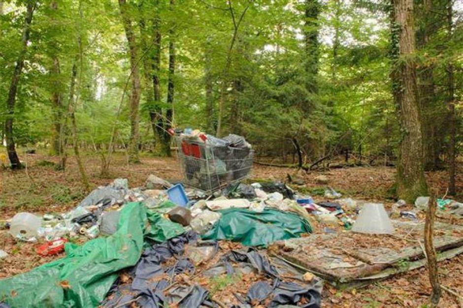 Śmieci ciągle lądują w lasach