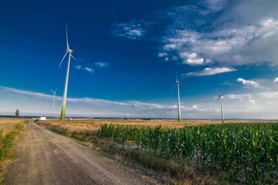 Farmy wiatrowe: nowe wiatraki pod Wrocławiem