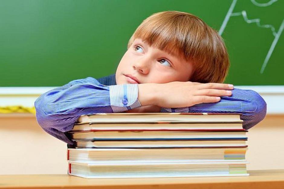 Szkoła wykształci, a PiS wychowa