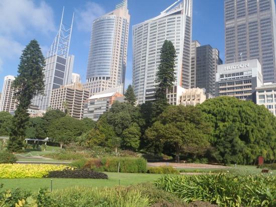 Miasta ogrody przeżywają renesans